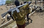 Herdsmen Violence: Fulani Model of Being Biafrans or False Allegation Against a 'Historically Dominant Minority'?