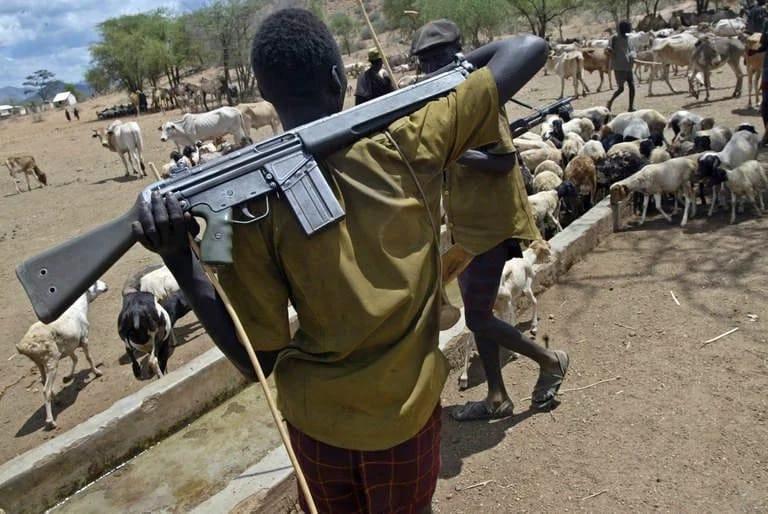 Herdsmen Violence: Fulani Model of Being Biafrans or False Allegation Against a 'Historically Dominant Minority'?
