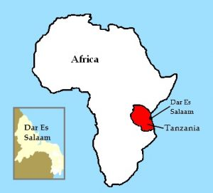 Tanzania in the African space