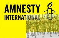 Amnesty International Versus the Nigerian Military