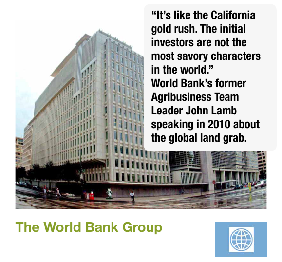 Report: World Bank Fuels Land Grabs in Africa