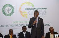 Barrister Paul Usoro Cannot Contest NBA Presidency - Dr Odinkalu