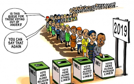 IRI, NDI Joins USIP in Assessing 2019 Election in Nigeria