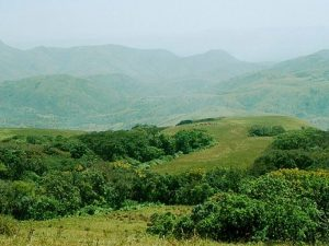 Another view of Mambilla Plateau