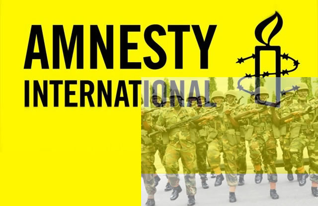 Amnesty International Versus the Nigerian Military