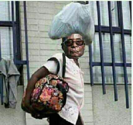 Who Falls Next After Mugabe?