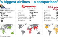 Does a National Airline Matter?