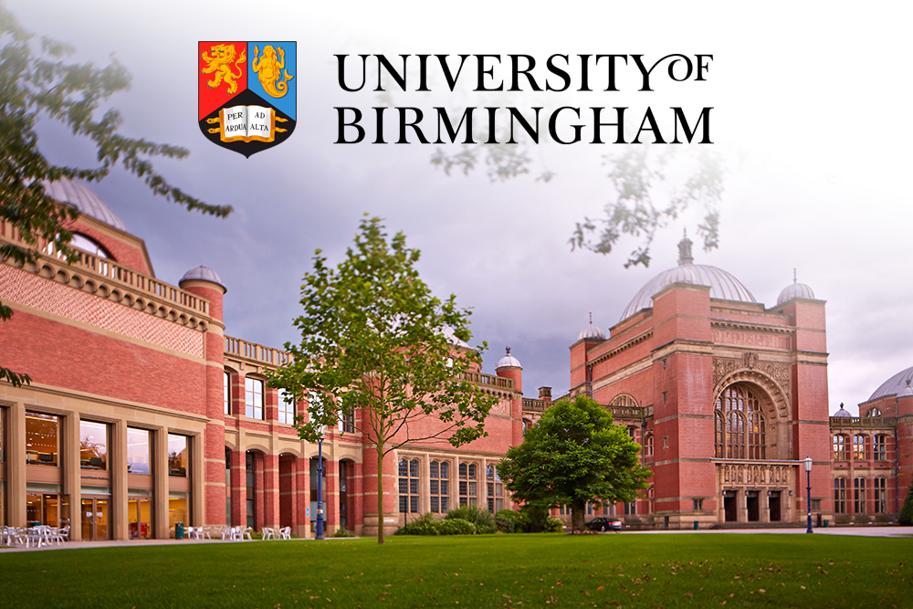 University of Birmingham to Investigate 'Fake News' in Nigerian Elections