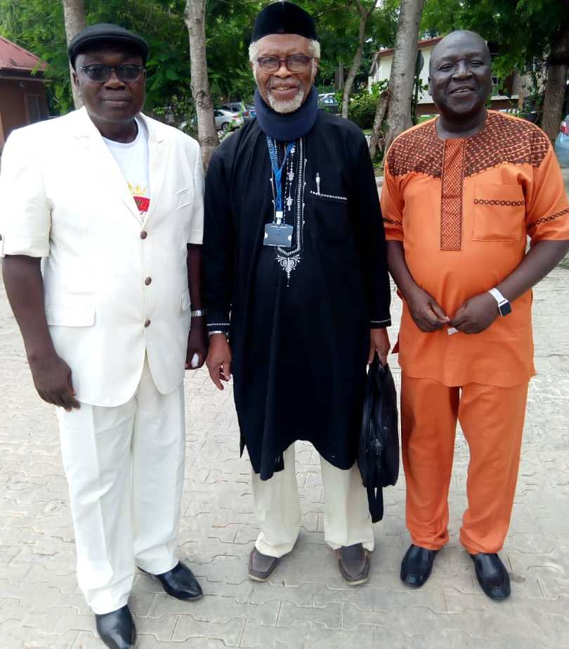 So, Prof Alaba Ogunsanwo is Still on Active Service!