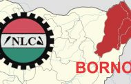 Reforming the Civil Service in Borno State